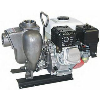 Gas Powered Stainless Steel Chemical Pumps